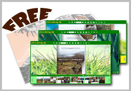 Flash Flip Book Templates of Grass Style